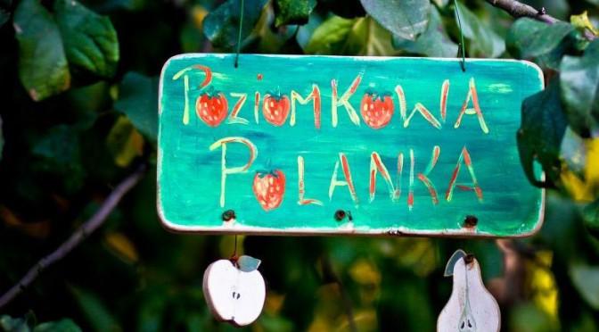Wiklinowa WIOSNA na Poziomkowej Polanie