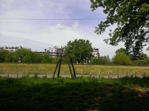 poziomkowa polana maj 2014