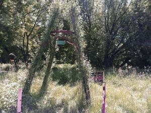 poziomkowa polana czerwiec 2014